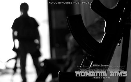 romania_aims.jpg