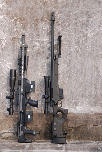 ARES DSR-1 and STAR AW 338